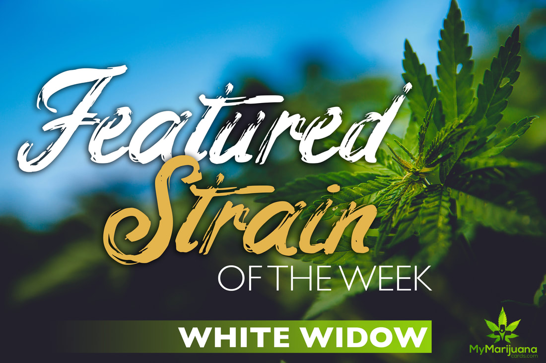 Featured Strain of the Week - White Widow
