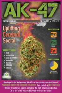 Featured medical marijuana strain of the week: AK-47 - Uplifting. Cerebral. Social