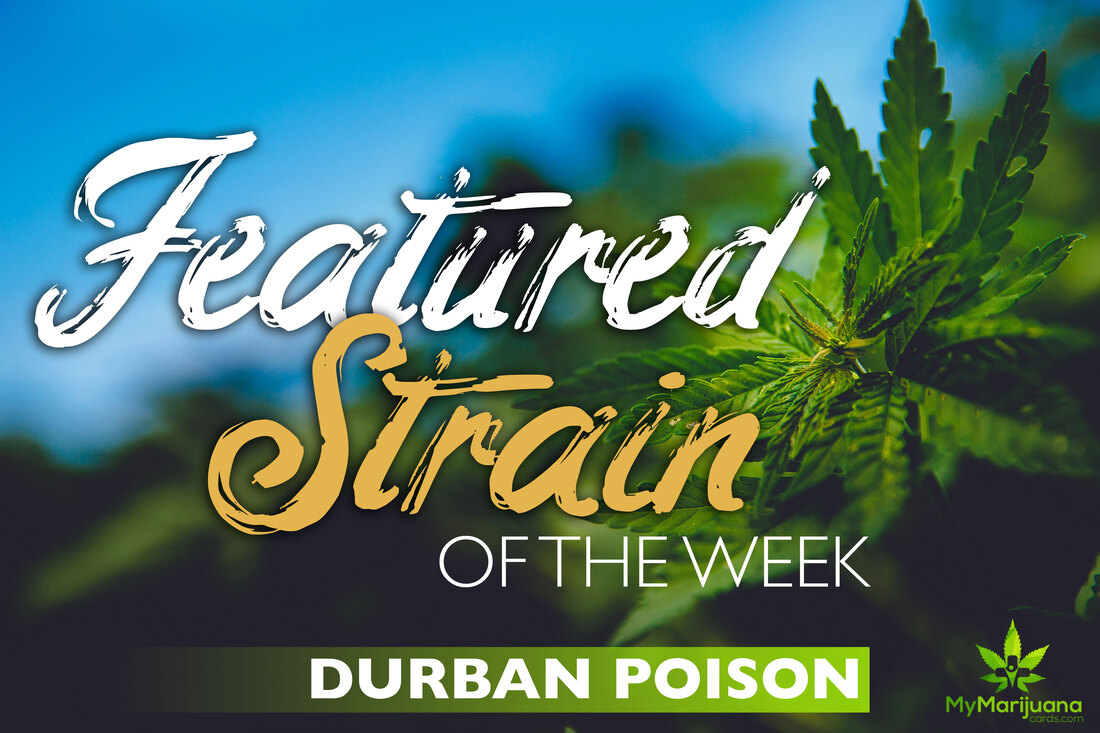 Featured Strain of the Week: Durban Poison