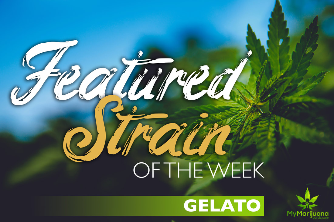 Featured Strain of the Week: Gelato