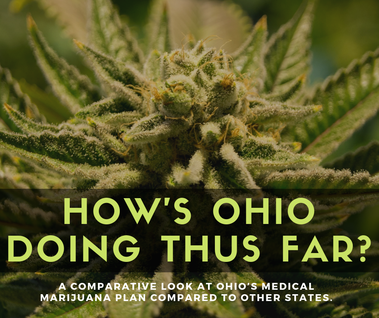 A look at how medical marijuana in Ohio is doing thus far.
