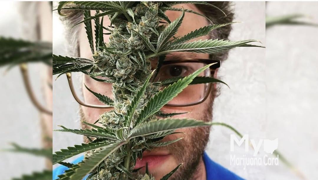 Seth-Rogan-New-Cannabis-Brand