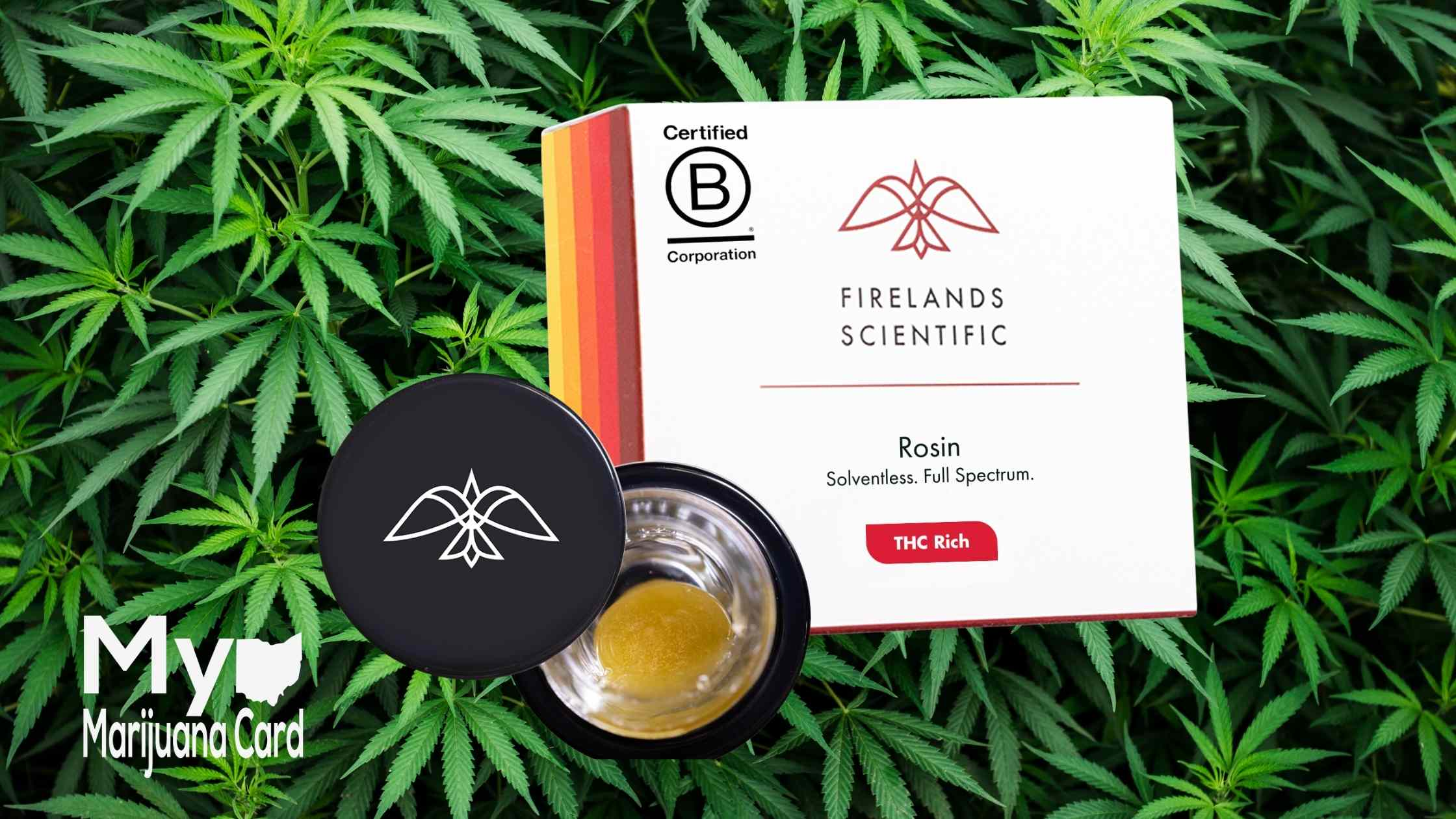 Live Resin VS Live Rosin, What's The Difference?