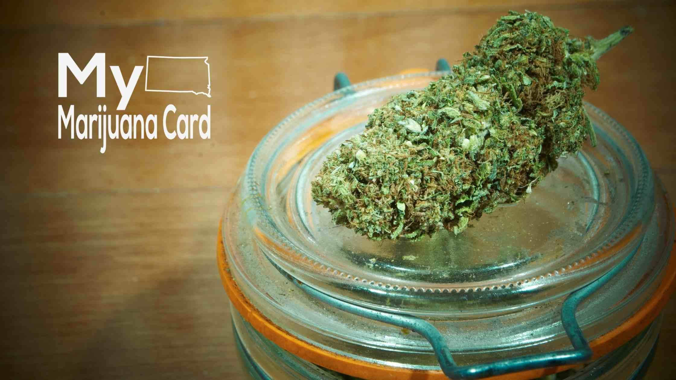South Dakota Looks for Assistance Developing Medical Marijuana Program